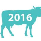 TransumArte 2016 - Freezer