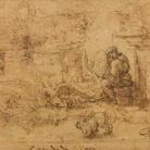 Intorno alla Sala delle Asse. Leonardo tra Natura, Arte e Scienza