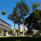 Palazzo RealeSummerFest