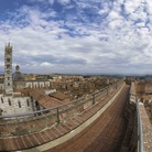 COMPLESSO MONUMENTALE DEL DUOMO DI SIENA - Aperture straordinarie ed eventi