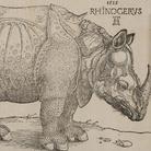 Albrecht Dürer. La collezione completa dei Remondini
