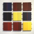 Enzo Cacciola. Concezioni, processi e contesti nella pittura  (1973 - 2016)
