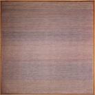 Segno, forma, colore nella Pittura «Analitica» di Rosanna Rossi