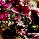 Stan Brakhage. The Dante Quartet