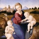 Raffaello. Madonna di Esterhazy