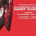 Harif Guzman. No Experience Necessary