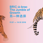 BRIC-à-brac | The Jumble of Growth | 另一种选择