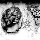 Carthage ou la memoire des pierres. Fotografie di Marianne Catzaras