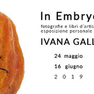 Ivana Galli. In Embryo