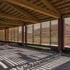Ad Aquileia brilla la domus di Tito Macro: cinque secoli di storia in una dimora senza precedenti