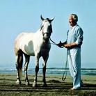 Marino nelle immagini di Aurelio Amendola (1968-1975)