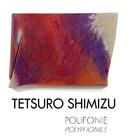 Tetsuro Shimizu. Polifonie