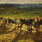 """Giornata Nazionale del Paesaggio /  Presentazione del libro """"Vincent van Gogh, I miei quadri raccontati da me"""" a cura di Piergiorgio Dragone"""
