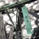 Art2Night - Tanabata. La settima notte