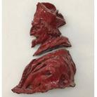Installazione di Giuseppe Ducrot e mostra di pittura di Wolfango