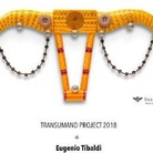 Eugenio Tibaldi. Transumand project 2018