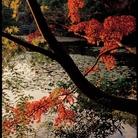 Spirito del Giappone. Fotografie di Suzanne Held