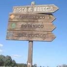 Palude e Bosco di Rauccio