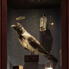 Amore, musei, ispirazione. Il Museo dell'innocenza di Orhan Pamuk a Milano