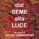 Dal seme alla luce. 46 opere di Silvio Gamberoni