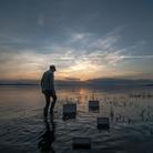 Roberto Ghezzi. Naturografie