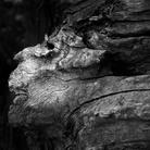 Dio si nasconde. Kozo Yano - Fotografie / André Simoncini - Poesie