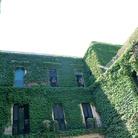 Palazzo Rollo