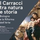 I Carracci tra natura e storia. Bologna e la Riforma dell'Arte
