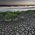 Wetlands: le terre d'acqua. Fotografie di Gabriele Espis