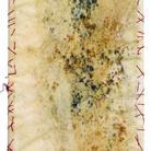 Ezio Tribbia. Campo di pane