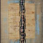 Carlo Pace. Spine dorsali e Fonemi