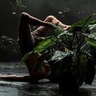 Paradise Now#Prato - Performance di Virgilio Sieni