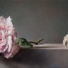 Confronti. Dialogo sulla natura morta | Gianluca Corona | Emanuele Dascanio