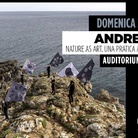 Andreco. Nature as art. Una pratica artistica - Incontro