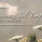 Desinenze del tempo: venti opere di Fulvio Rinaldi
