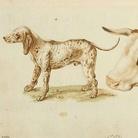 Sinibaldo Scorza (1589 - 1631). Avezzo a maneggiare la penna disegnando