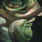Visioni. L'arte ha occhi ben aperti più del giorno