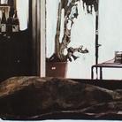 Eugenio Tibaldi. Studio sulle