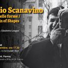 Emilio Scanavino. Genesi delle forme