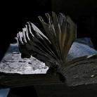Last Folio. Un viaggio fotografico insieme a Yuri Dojc
