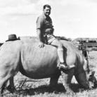 Imer Guala. Taccuino di viaggio. Memorie e segni d'Africa 1958 - Kenya, Tanganica, Uganda
