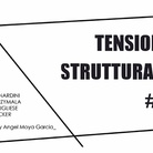 Attitudes > Sculpture #1 / Tensioni Strutturali  #1