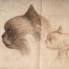 Carlo Rambaldi, Da gatto Kikka a ET, Studio per il volto di ET rielaborando il muso della sua gatta | © Fondazione Culturale Carlo Rambaldi