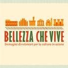 La Bellezza salverà il mondo: intervista a Riccardo Bonacina nel giorno degli Stati Generali del Volontariato Culturale