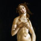#Realedisera - La Venere di Botticelli