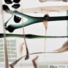 Contatti - Rassegna d'arte contemporanea