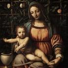 Bernardino Luini e i suoi figli