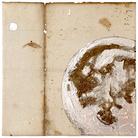 Davide Ragazzi. Over the Moon. Contemporary art exhibition