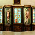Musei di Palazzo Poggi