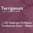 Terrigenum